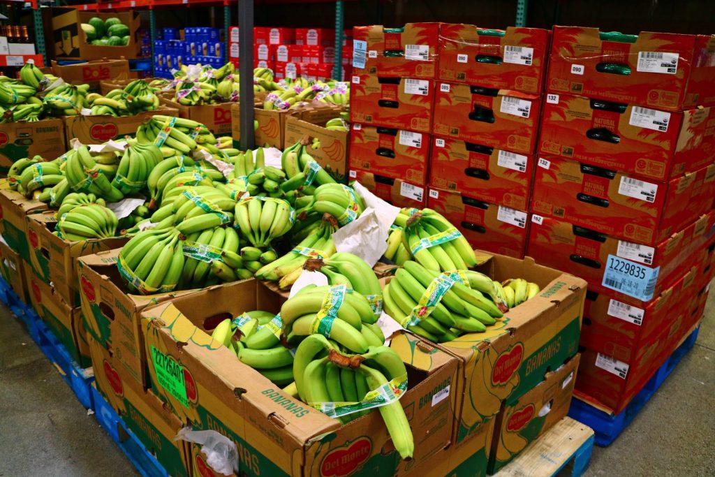 Fruit waste - banana case study